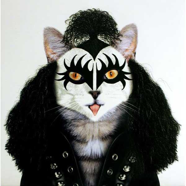 grandoman_pets_rock_02
