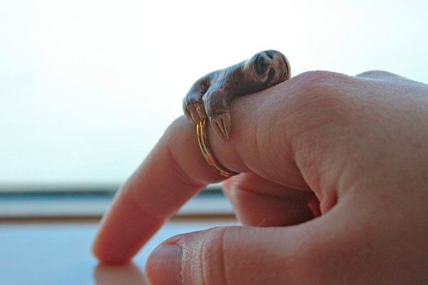 Ленивец по пръстите (2)