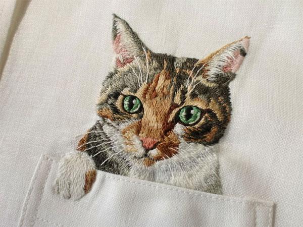 Котка в джоба (3)