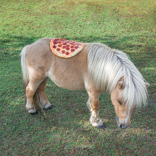 Дивата пица (1)
