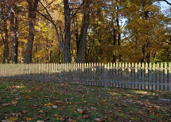 (Не)видима ограда (5)
