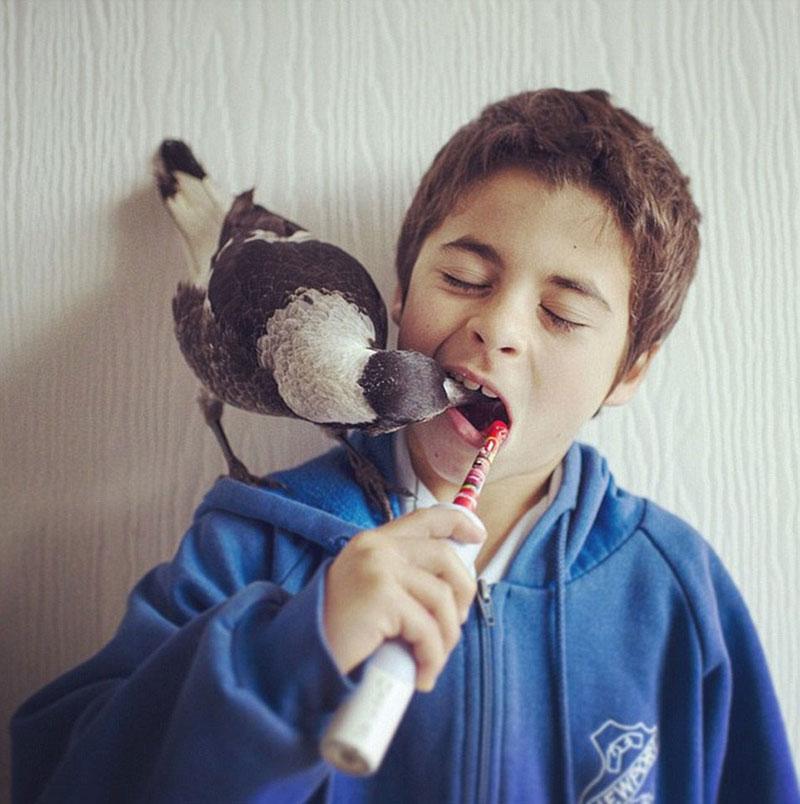 Ноа и Пингвин (4)