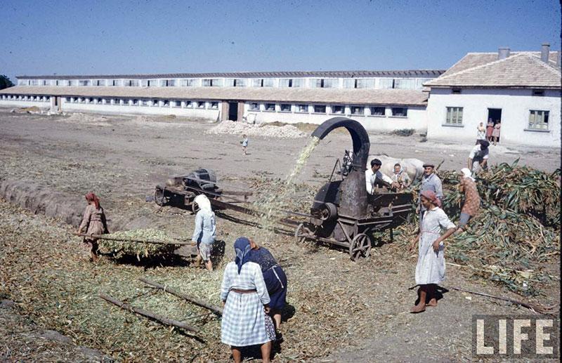 България, 1961 г. (6)