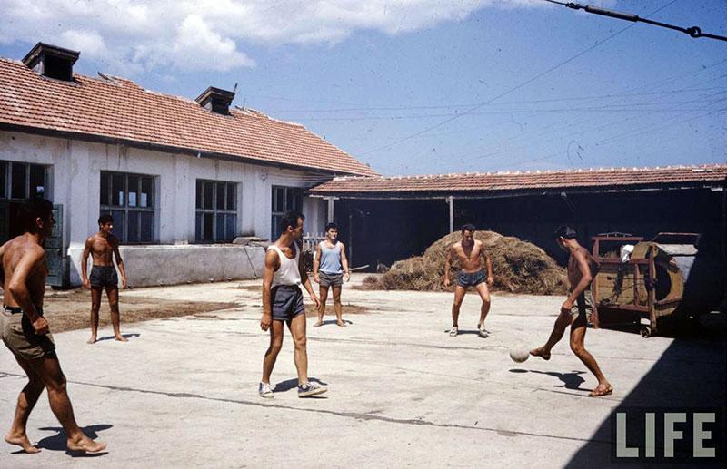 България, 1961 г. (18)